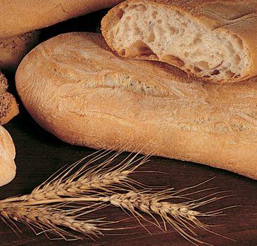 La lavorazione del pane