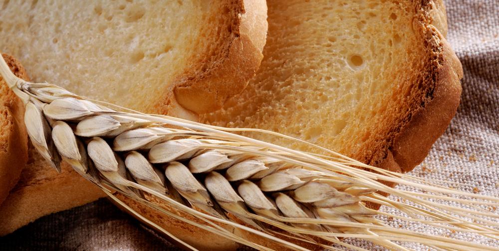 Farnia per pane e fette biscottate
