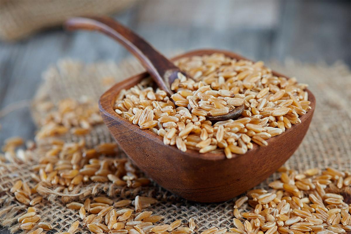 Cos'è il grano Khorasan e cos'è il Kamut?